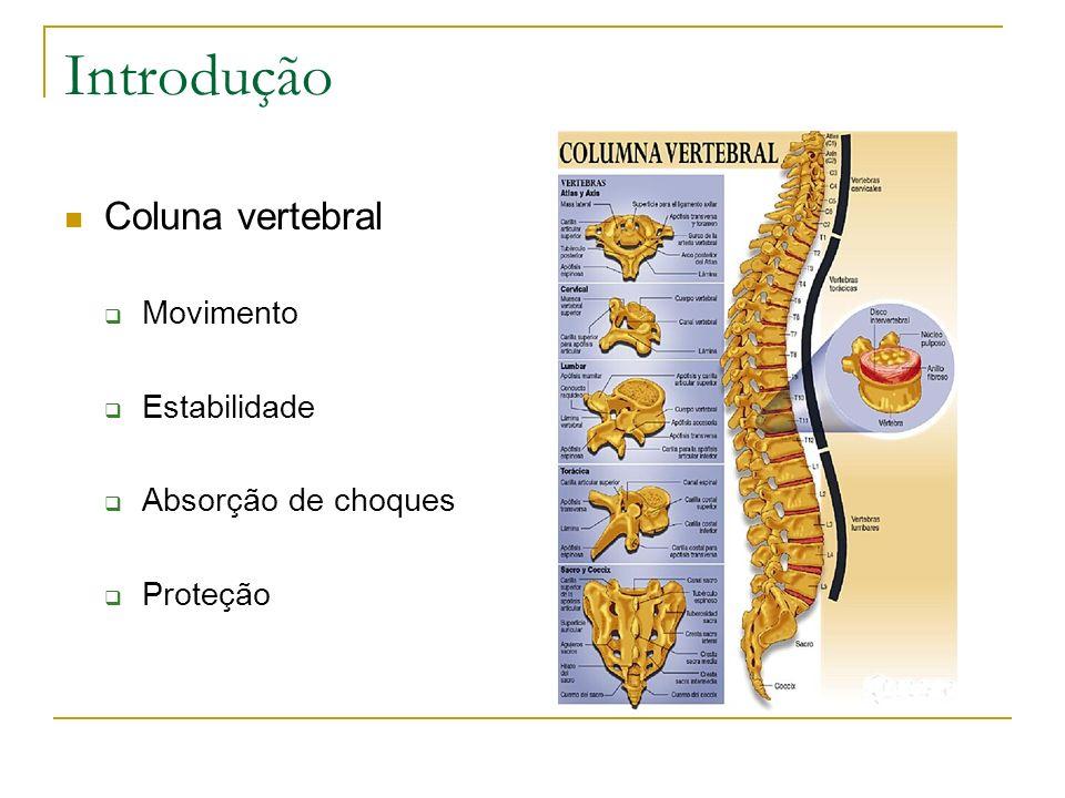 Introdução Coluna vertebral Movimento Estabilidade Absorção de choques Proteção