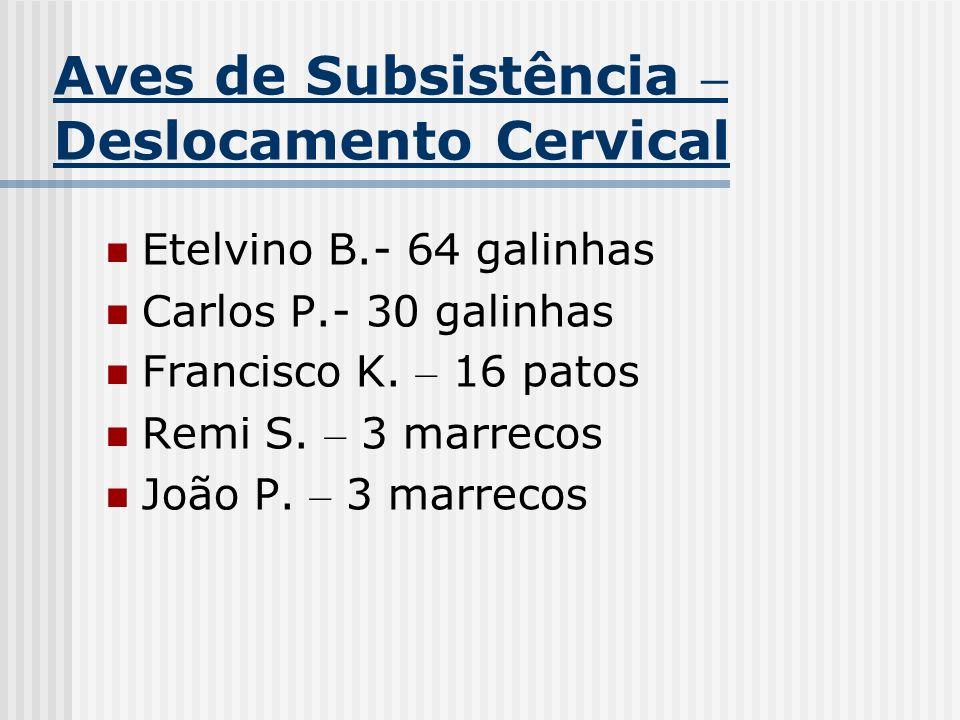 Aves de Subsistência – Deslocamento Cervical Etelvino B.- 64 galinhas Carlos P.- 30 galinhas Francisco K. – 16 patos Remi S. – 3 marrecos João P. – 3
