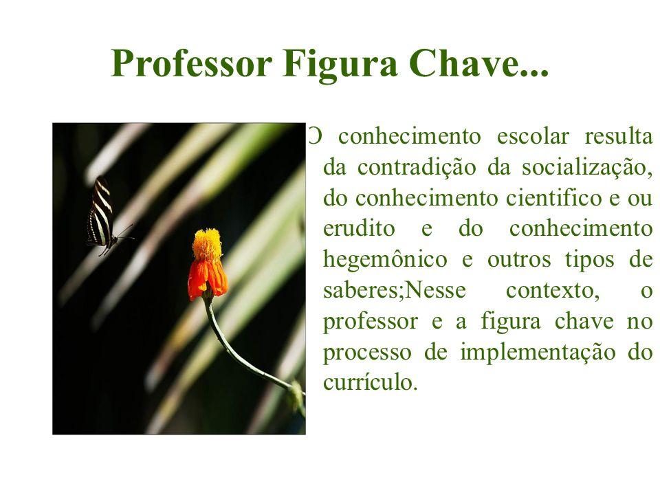 Professor Figura Chave... O conhecimento escolar resulta da contradição da socialização, do conhecimento cientifico e ou erudito e do conhecimento heg