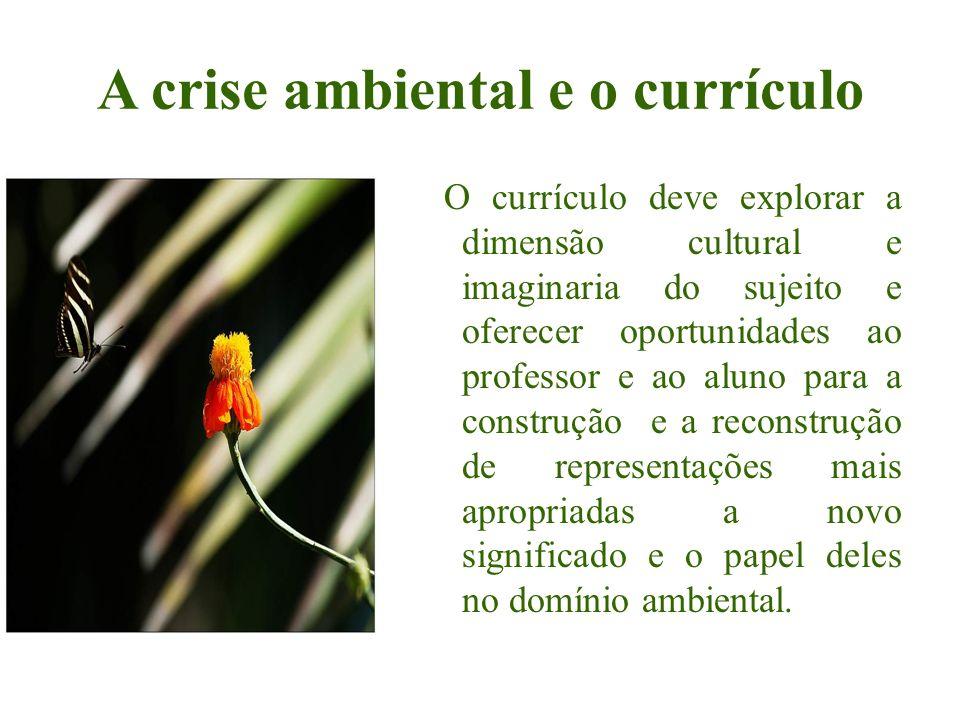 A crise ambiental e o currículo O currículo deve explorar a dimensão cultural e imaginaria do sujeito e oferecer oportunidades ao professor e ao aluno