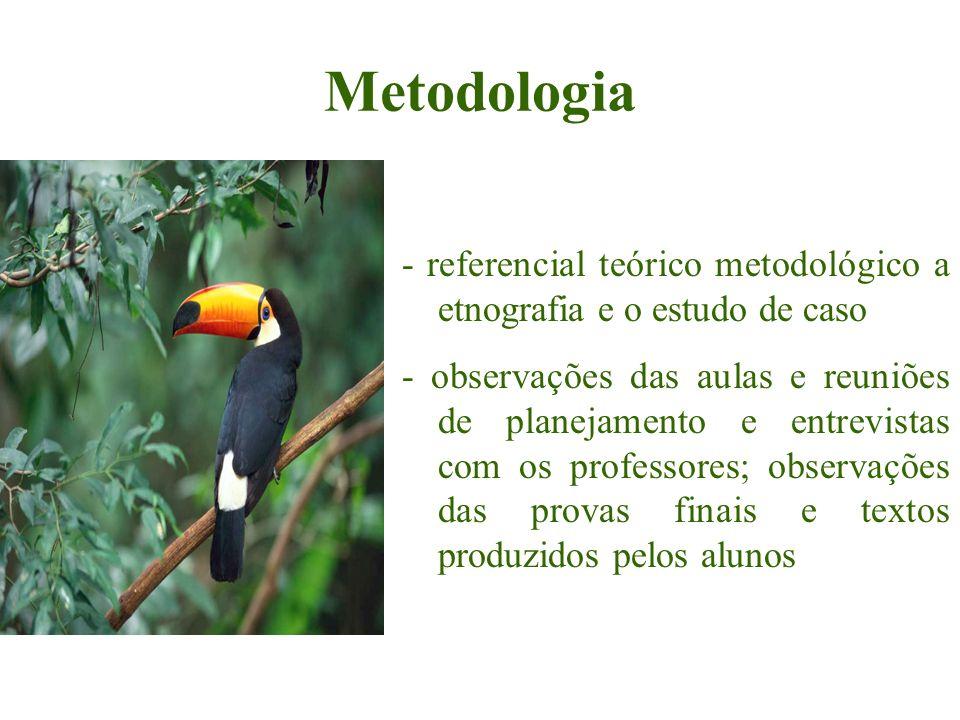 Metodologia - referencial teórico metodológico a etnografia e o estudo de caso - observações das aulas e reuniões de planejamento e entrevistas com os