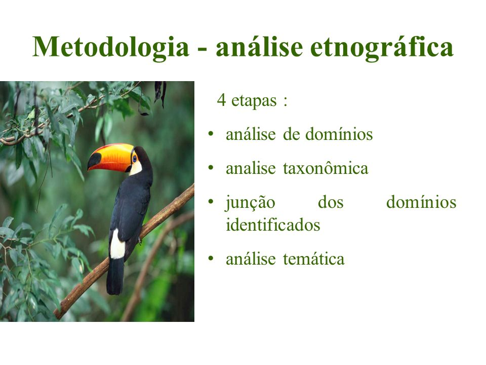 Metodologia - análise etnográfica 4 etapas : análise de domínios analise taxonômica junção dos domínios identificados análise temática