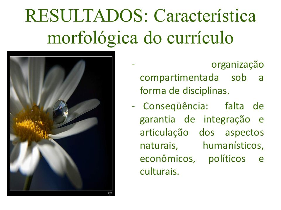 RESULTADOS: Característica morfológica do currículo - organização compartimentada sob a forma de disciplinas. - Conseqüência: falta de garantia de int