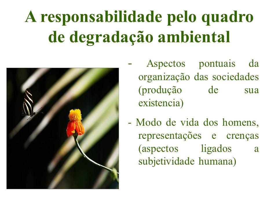 A responsabilidade pelo quadro de degradação ambiental - Aspectos pontuais da organização das sociedades (produção de sua existencia) - Modo de vida d