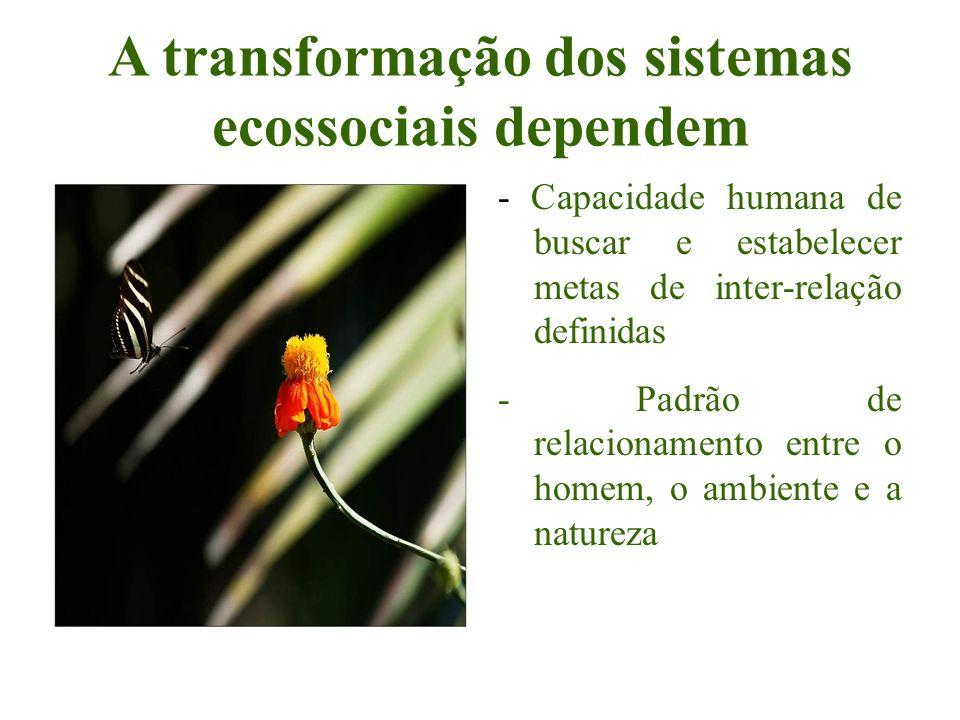 A transformação dos sistemas ecossociais dependem - Capacidade humana de buscar e estabelecer metas de inter-relação definidas - Padrão de relacioname