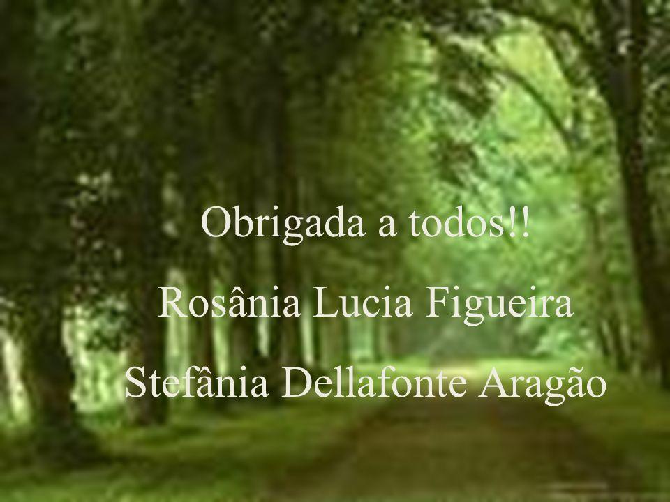 Obrigada a todos!! Rosânia Lucia Figueira Stefânia Dellafonte Aragão