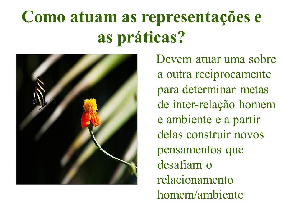 Como atuam as representações e as práticas? Devem atuar uma sobre a outra reciprocamente para determinar metas de inter-relação homem e ambiente e a p