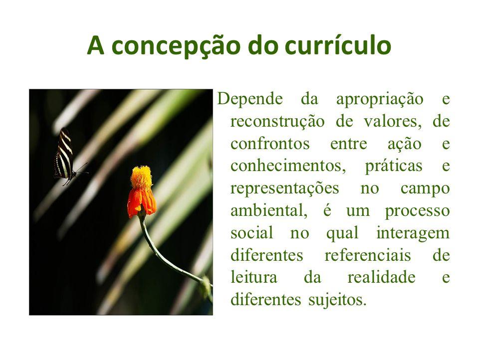 A concepção do currículo Depende da apropriação e reconstrução de valores, de confrontos entre ação e conhecimentos, práticas e representações no camp