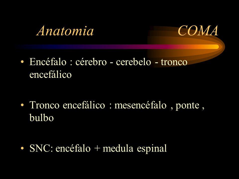 Anatomia COMA Encéfalo : cérebro - cerebelo - tronco encefálico Tronco encefálico : mesencéfalo, ponte, bulbo SNC: encéfalo + medula espinal