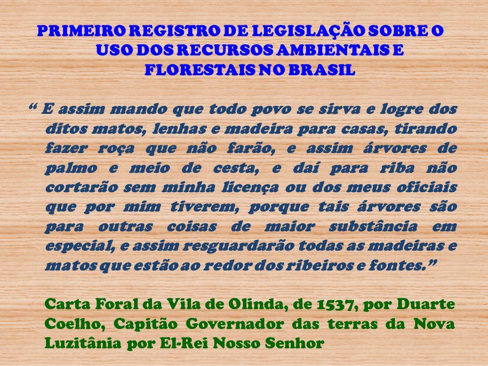 BRASIL – Único país a ter nome de árvore.Pau-brasil - Caesalpinia echinata Lam.