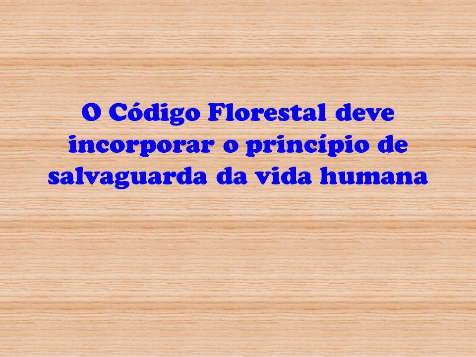 O Código Florestal deve incorporar o princípio de salvaguarda da vida humana