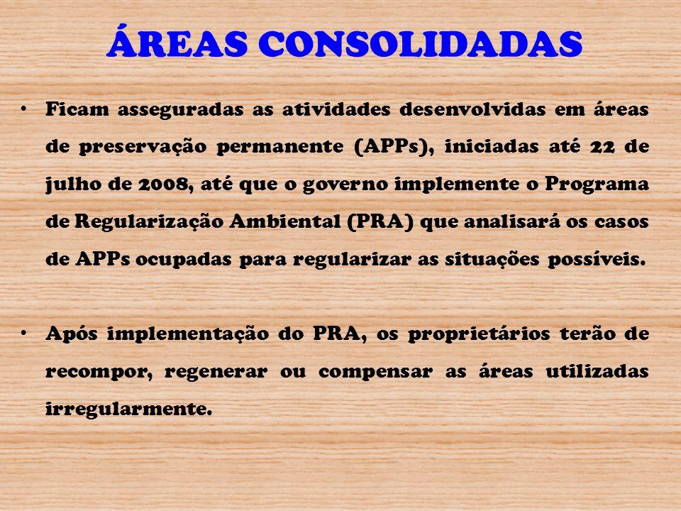 ÁREAS CONSOLIDADAS Ficam asseguradas as atividades desenvolvidas em áreas de preservação permanente (APPs), iniciadas até 22 de julho de 2008, até que