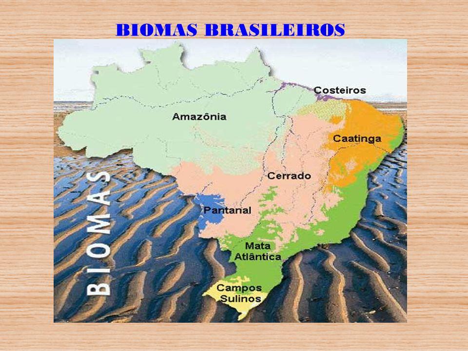 Área Total do País => 851 Milhões ha.