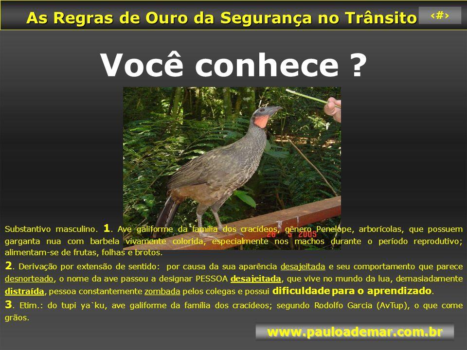 As Regras de Ouro da Segurança no Trânsito As Regras de Ouro da Segurança no Trânsito www.pauloademar.com.br 36 Cuidado...