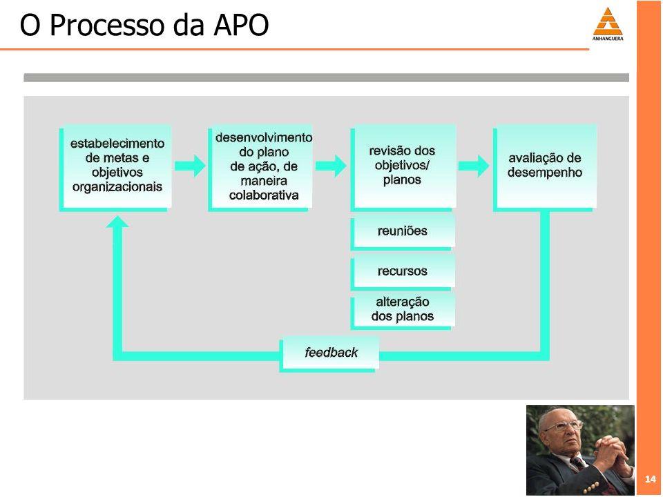 14 O Processo da APO