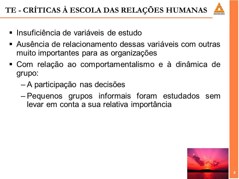 3 3 TE - CRÍTICAS À ESCOLA DAS RELAÇÕES HUMANAS Insuficiência de variáveis de estudo Ausência de relacionamento dessas variáveis com outras muito impo