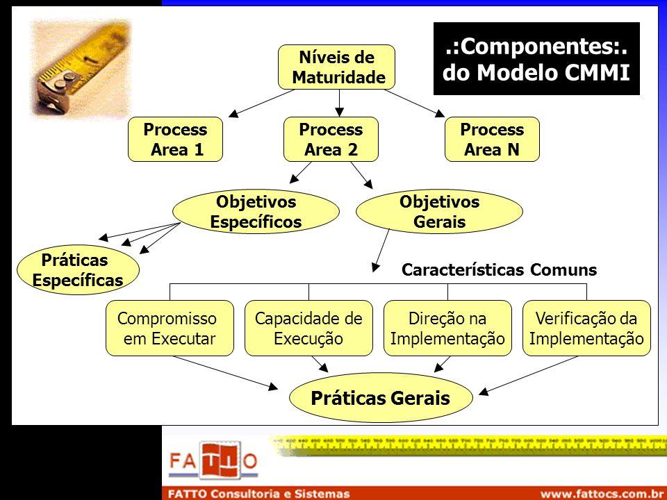 Níveis de Maturidade Process Area 1 Process Area 2 Process Area N Objetivos Específicos Objetivos Gerais Práticas Específicas Compromisso em Executar