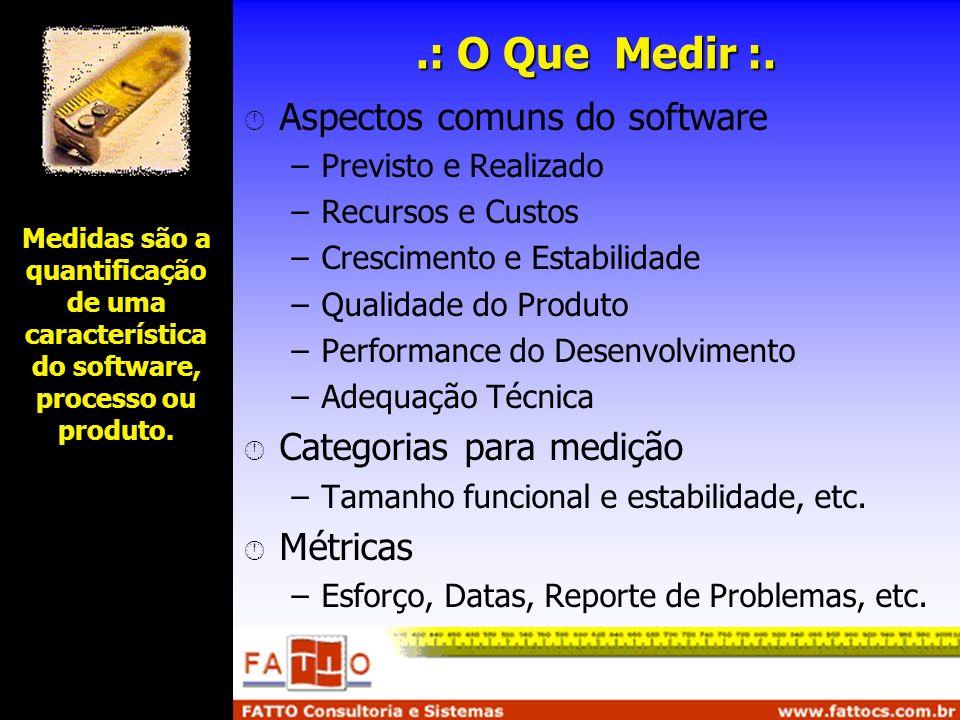 Medidas são a quantificação de uma característica do software, processo ou produto..: O Que Medir :. Aspectos comuns do software –Previsto e Realizado