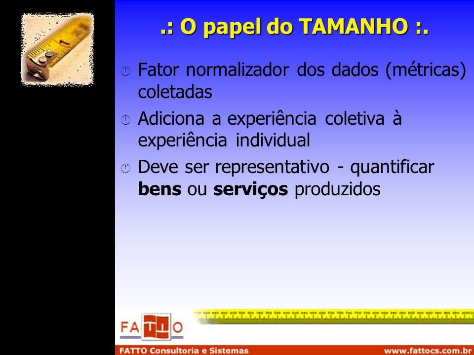 .: O papel do TAMANHO :. Fator normalizador dos dados (métricas) coletadas Adiciona a experiência coletiva à experiência individual Deve ser represent