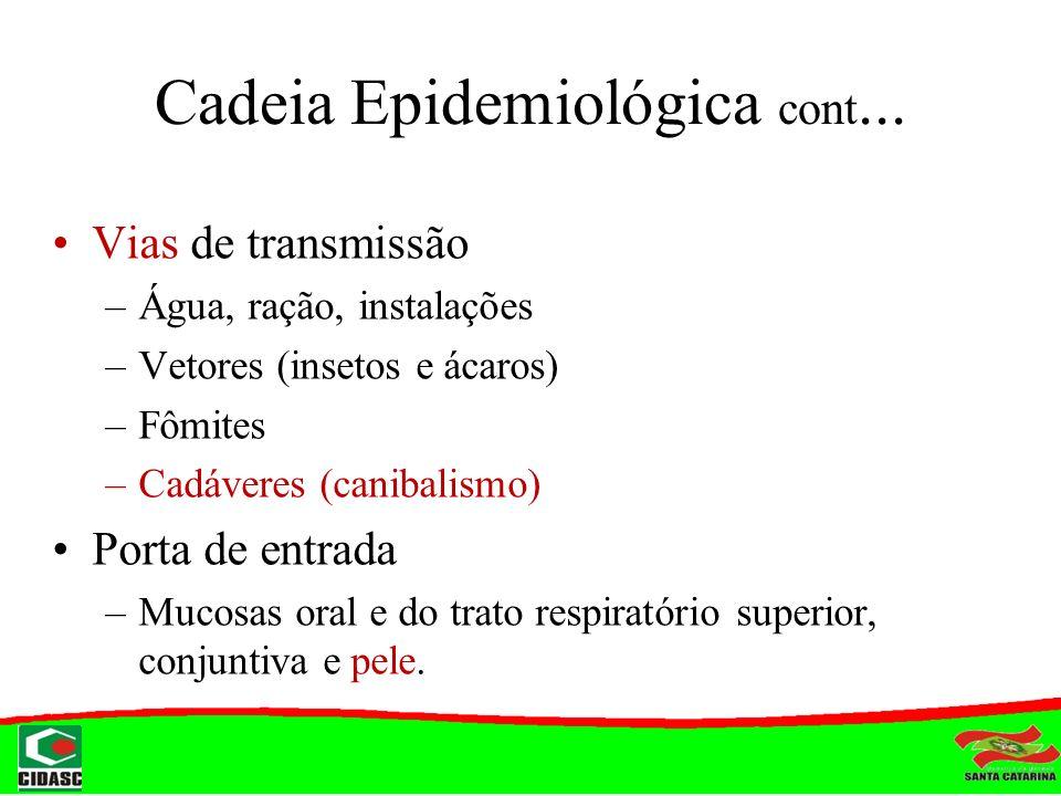 Cadeia Epidemiológica cont... Vias de transmissão –Água, ração, instalações –Vetores (insetos e ácaros) –Fômites –Cadáveres (canibalismo) Porta de ent