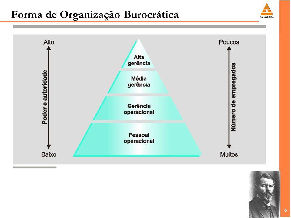 6 6 Forma de Organização Burocrática