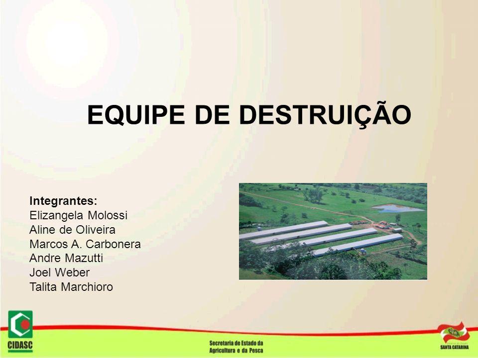 EQUIPE DE DESTRUIÇÃO Integrantes: Elizangela Molossi Aline de Oliveira Marcos A. Carbonera Andre Mazutti Joel Weber Talita Marchioro