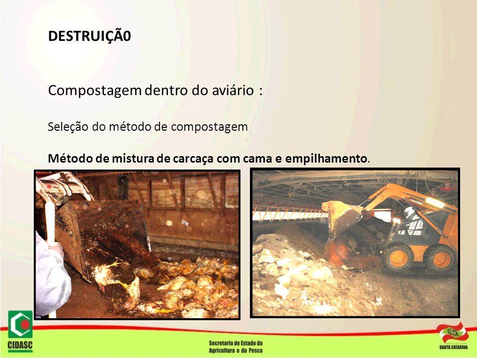 DESTRUIÇÃ0 Compostagem dentro do aviário : Seleção do método de compostagem Método de mistura de carcaça com cama e empilhamento.