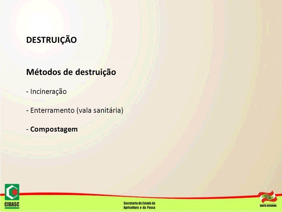 DESTRUIÇÃO Métodos de destruição - Incineração - Enterramento (vala sanitária) - Compostagem