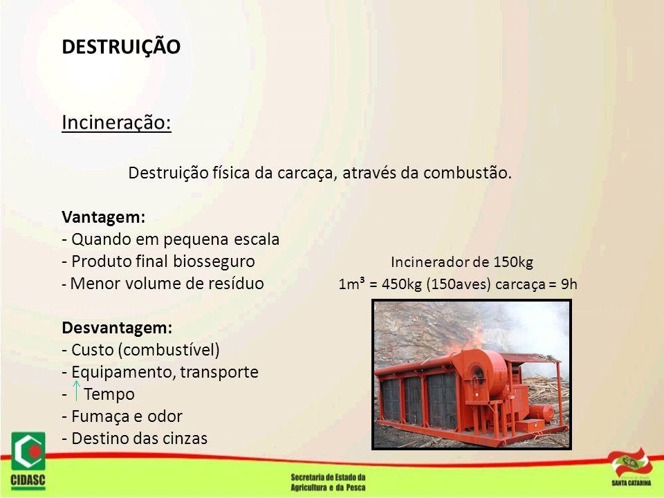 DESTRUIÇÃO Incineração: Destruição física da carcaça, através da combustão. Vantagem: - Quando em pequena escala - Produto final biosseguro Incinerado