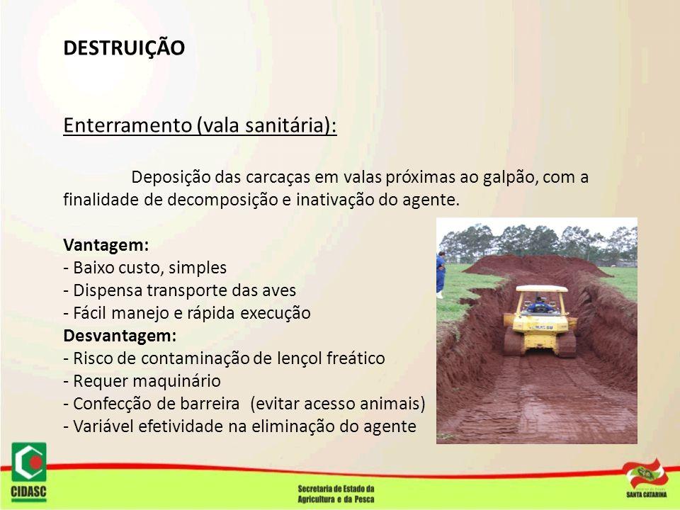 DESTRUIÇÃO Enterramento (vala sanitária): Deposição das carcaças em valas próximas ao galpão, com a finalidade de decomposição e inativação do agente.