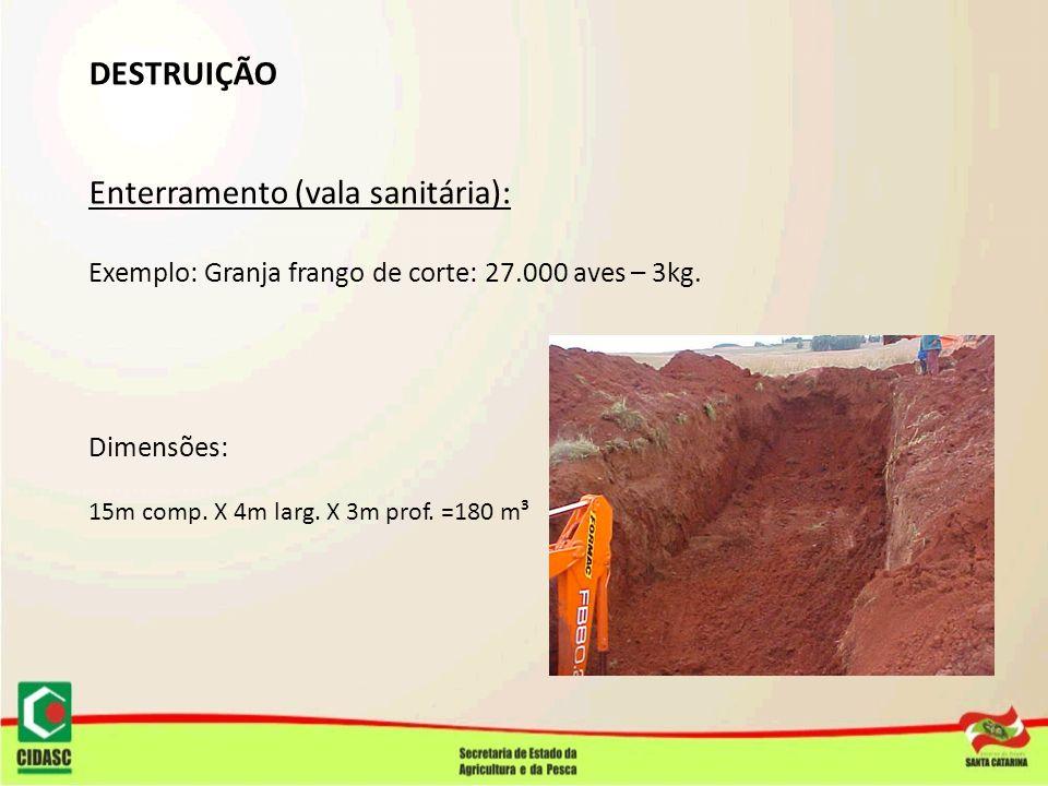 DESTRUIÇÃO Enterramento (vala sanitária): Exemplo: Granja frango de corte: 27.000 aves – 3kg. Dimensões: 15m comp. X 4m larg. X 3m prof. =180 m³