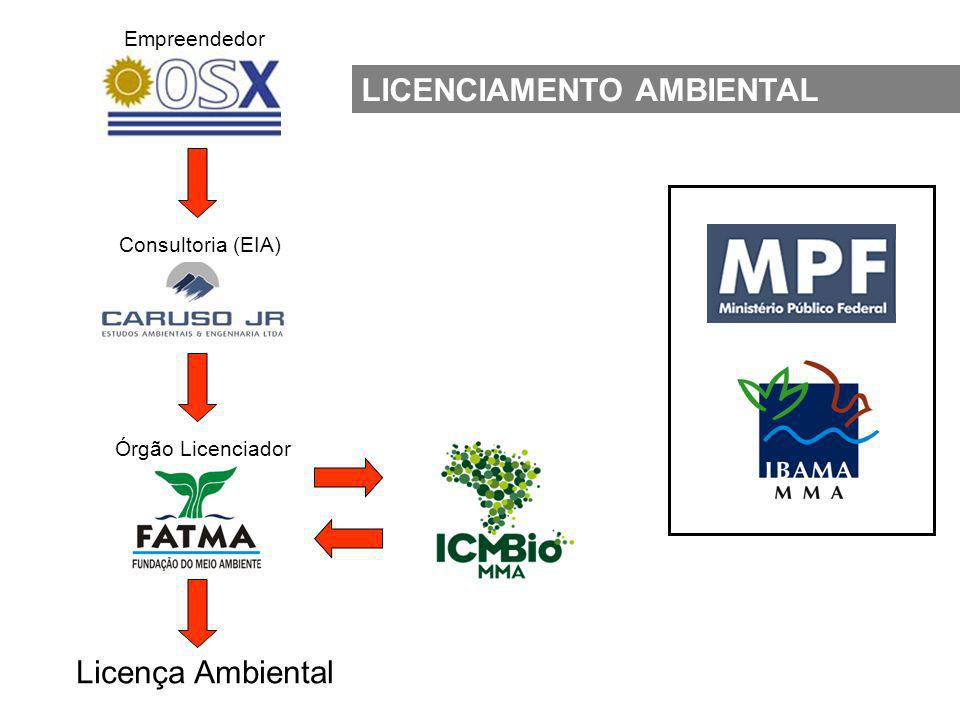 Empreendedor Consultoria (EIA) Órgão Licenciador Licença Ambiental LICENCIAMENTO AMBIENTAL