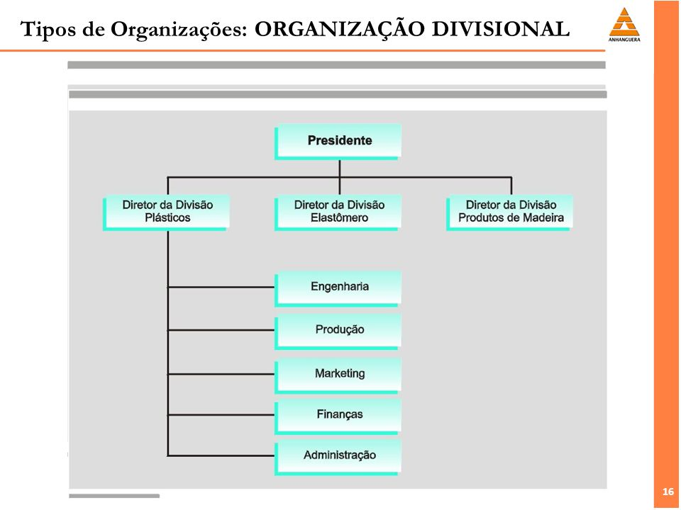 16 Tipos de Organizações: ORGANIZAÇÃO DIVISIONAL