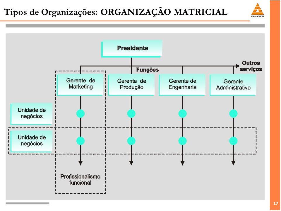 17 Tipos de Organizações: ORGANIZAÇÃO MATRICIAL