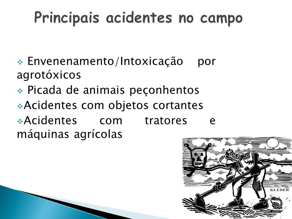 Envenenamento/Intoxicação por agrotóxicos Picada de animais peçonhentos Acidentes com objetos cortantes Acidentes com tratores e máquinas agrícolas