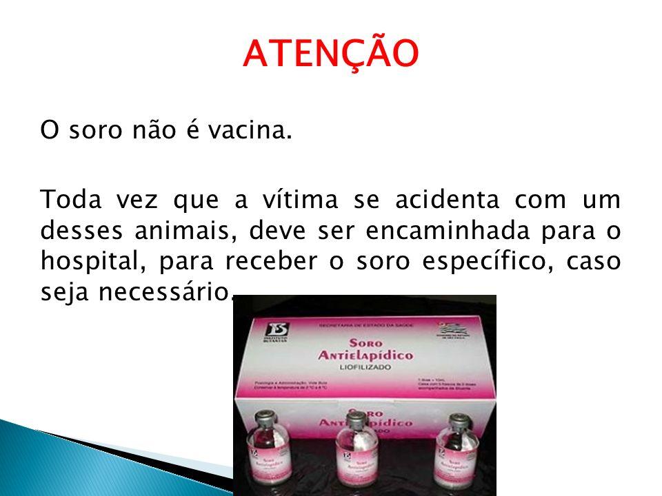 ATENÇÃO O soro não é vacina. Toda vez que a vítima se acidenta com um desses animais, deve ser encaminhada para o hospital, para receber o soro especí
