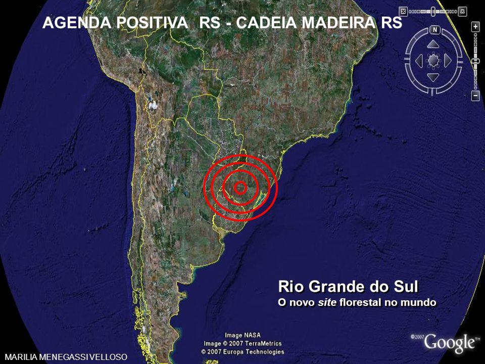 Rio Grande do Sul O novo site florestal no mundo Rio Grande do Sul O novo site florestal no mundo AGENDA POSITIVA RS - CADEIA MADEIRA RS MARILIA MENEG