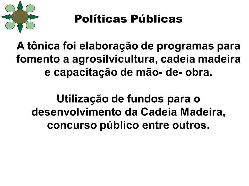 Políticas Públicas A tônica foi elaboração de programas para fomento a agrosilvicultura, cadeia madeira e capacitação de mão- de- obra. Utilização de