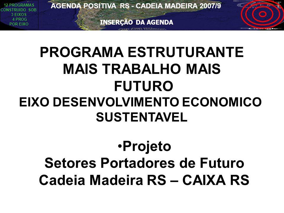 PROGRAMA ESTRUTURANTE MAIS TRABALHO MAIS FUTURO EIXO DESENVOLVIMENTO ECONOMICO SUSTENTAVEL Projeto Setores Portadores de Futuro Cadeia Madeira RS – CA