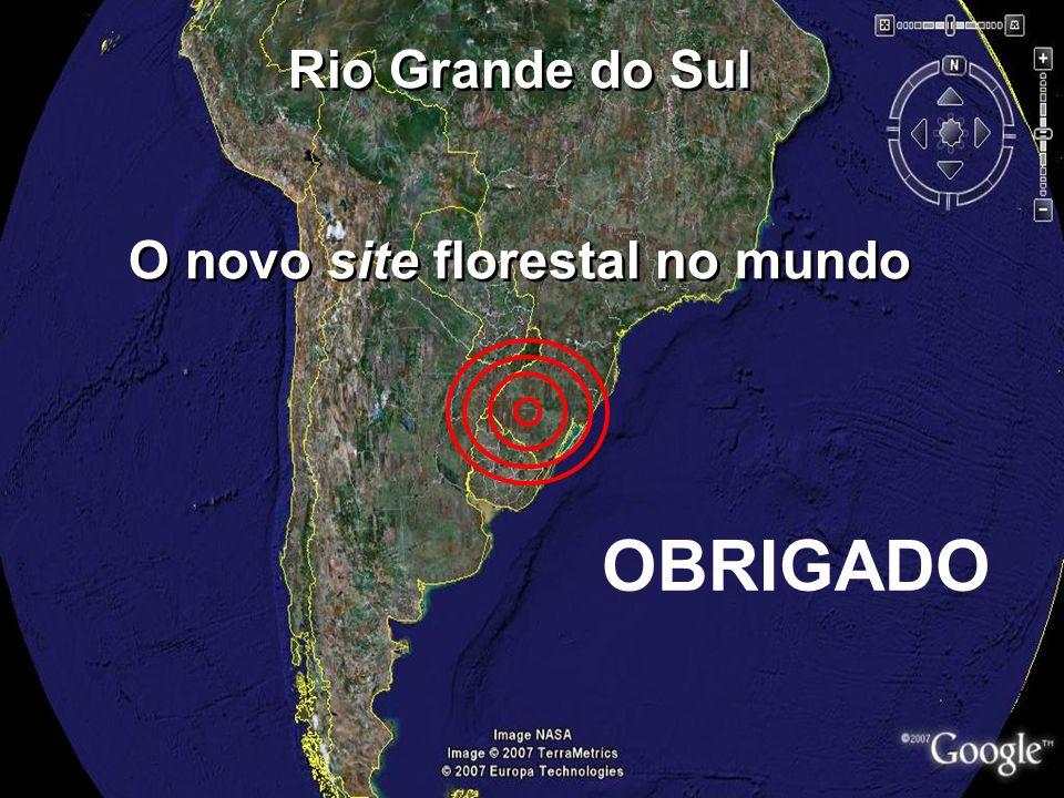 Rio Grande do Sul O novo site florestal no mundo Rio Grande do Sul O novo site florestal no mundo OBRIGADO