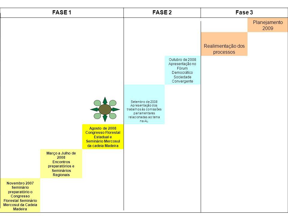 FASE 1FASE 2Fase 3 Planejamento 2009 Realimentação dos processos Outubro de 2008 Apresentação no Fórum Democrático Sociedade Convergente Setembro de 2