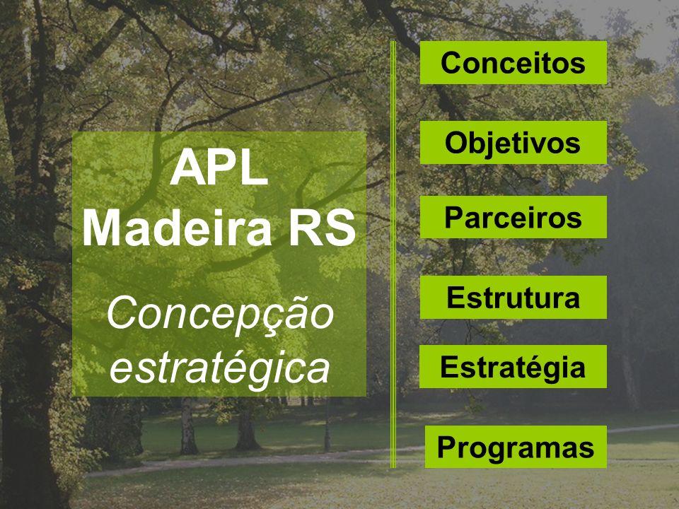 Conceitos Objetivos Parceiros Estrutura Estratégia Programas APL Madeira RS Concepção estratégica