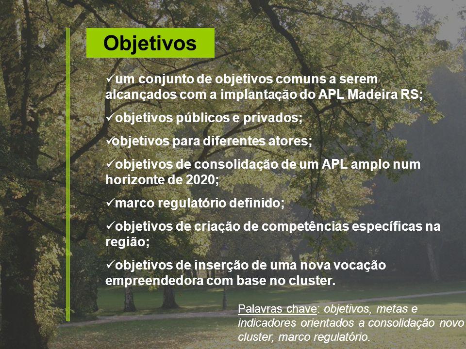 Objetivos um conjunto de objetivos comuns a serem alcançados com a implantação do APL Madeira RS; objetivos públicos e privados; objetivos para difere