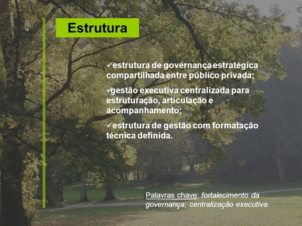 Estrutura estrutura de governança estratégica compartilhada entre público privada; gestão executiva centralizada para estruturação, articulação e acom