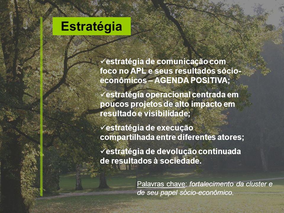 Estratégia estratégia de comunicação com foco no APL e seus resultados sócio- econômicos – AGENDA POSITIVA; estratégia operacional centrada em poucos