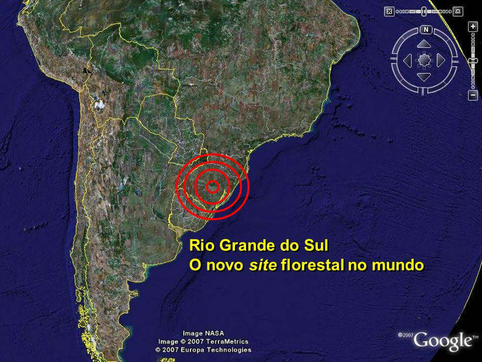 Rio Grande do Sul O novo site florestal no mundo Rio Grande do Sul O novo site florestal no mundo