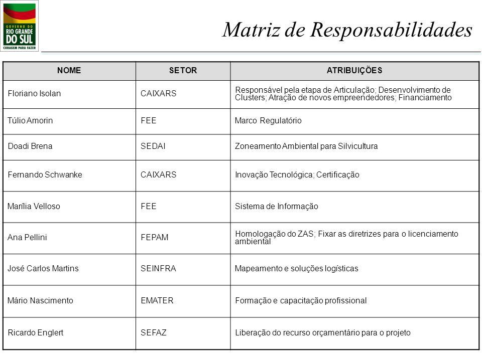 NOMESETORATRIBUIÇÕES Floriano IsolanCAIXARS Responsável pela etapa de Articulação; Desenvolvimento de Clusters; Atração de novos empreendedores; Finan