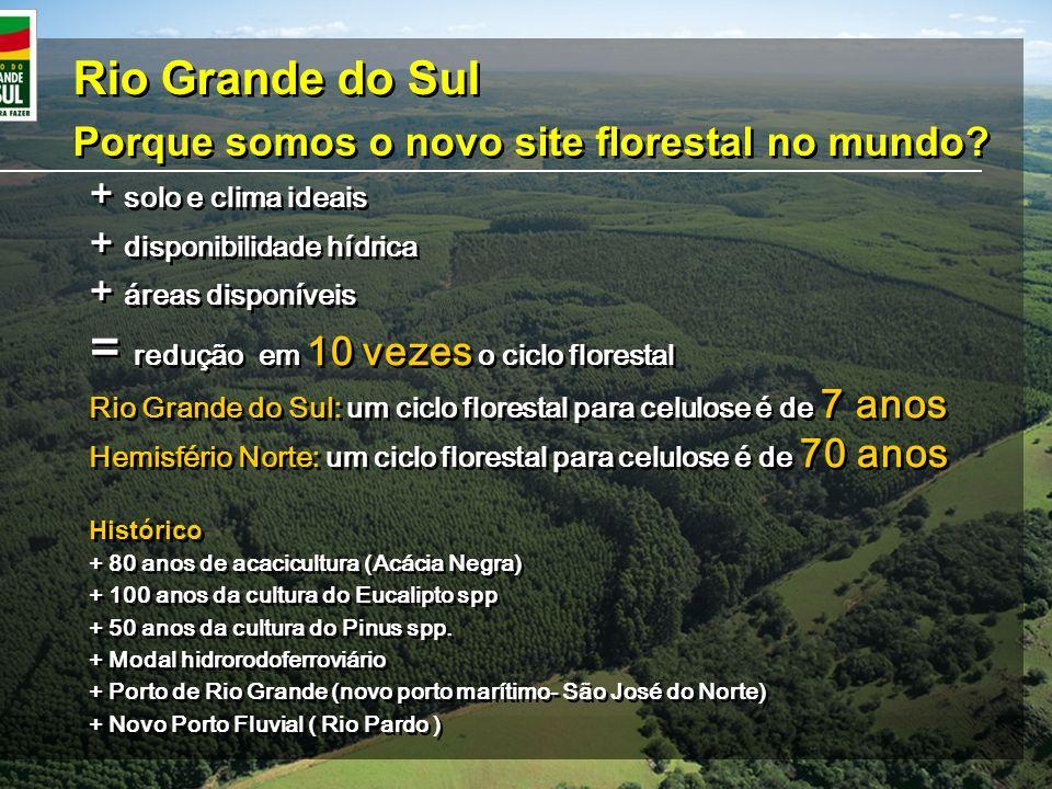 Rio Grande do Sul Porque somos o novo site florestal no mundo? Rio Grande do Sul Porque somos o novo site florestal no mundo? + solo e clima ideais +