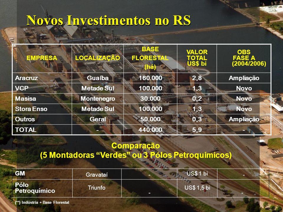 Novos Investimentos no RS EMPRESALOCALIZAÇÃO BASE FLORESTAL (há) VALOR TOTAL US$ bi OBS FASE A (2004/2006) AracruzGuaíba160.0002,8Ampliação VCPMetade