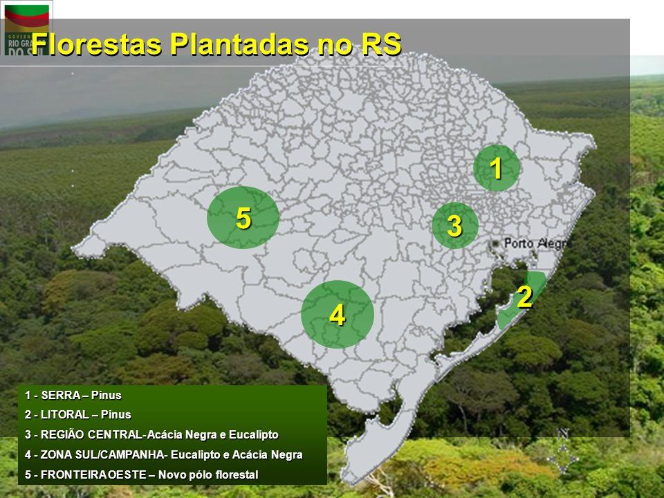 Florestas Plantadas no RS 1 - SERRA – Pinus 2 - LITORAL – Pinus 3 - REGIÃO CENTRAL- Acácia Negra e Eucalipto 4 - ZONA SUL/CAMPANHA- Eucalipto e Acácia